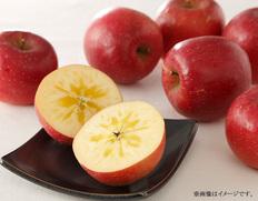 岩手県産りんご「江刺のサンフジ」【2021年11月中にお届け】の画像