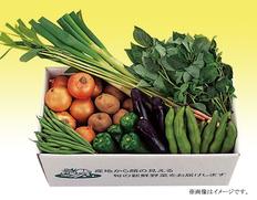 【千葉県】千葉県産 旬の採りたて新鮮野菜セットの画像