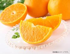 愛媛県産 完熟せとか【2022年1月中にお届け】の画像