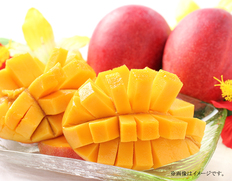 宮崎県産 完熟マンゴー 2玉の画像