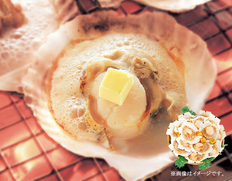 帆立片貝バター付14枚の画像
